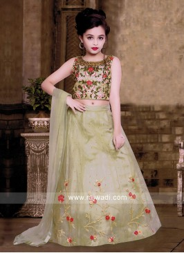 Silk and Net Fabric Choli Suit for Kids
