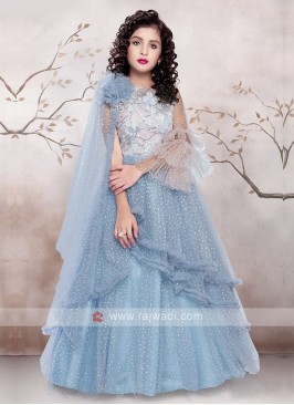 Sky Blue Color Net Gown
