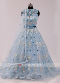 Sky Blue Net Choli Suit