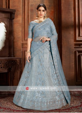 Sky Blue soft net Lehenga choli with matching Dupatta.