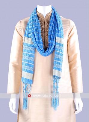 Sky Blue Zari Embellished Dupatta