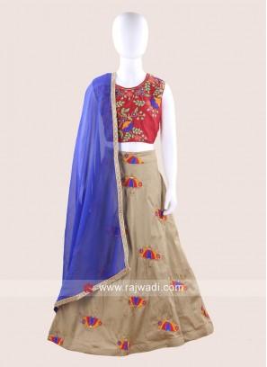 Stitched Embroidered Chaniya Choli
