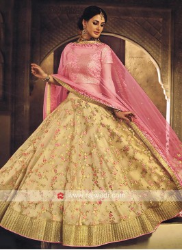 Tan Embroidered Lehenga with Dupatta