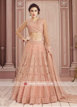 Traditional Net Fabric Choli Suit