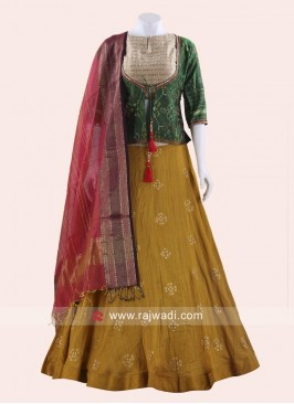 Traditional Embroidered Choli Suit