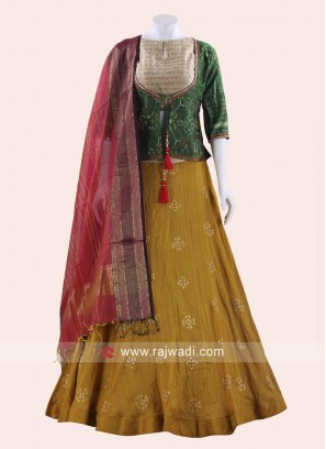 Traditional Readymade Choli Suit